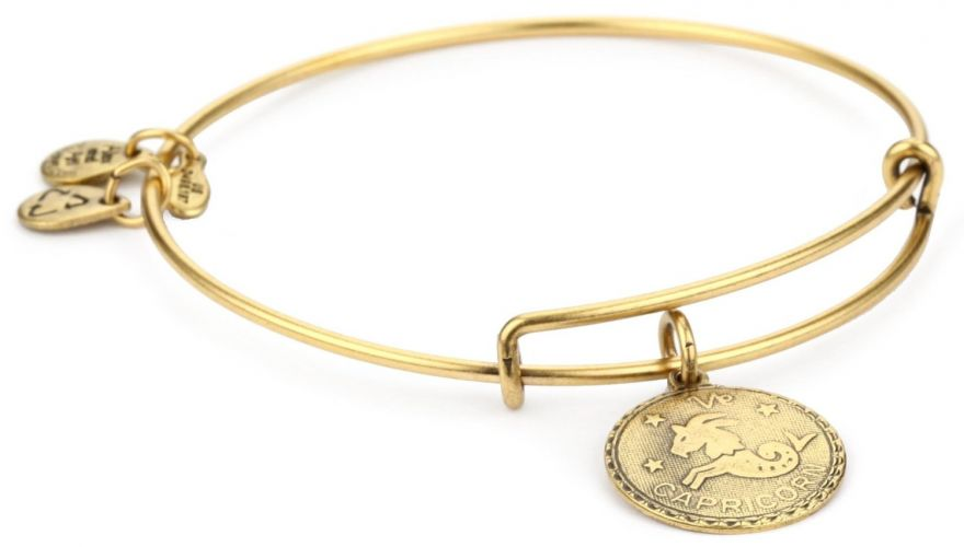 "Alex and Ani ""Bangle Bracelet Bar"" Russian Gold-Plated Capricorn Bangle Bracelet"
